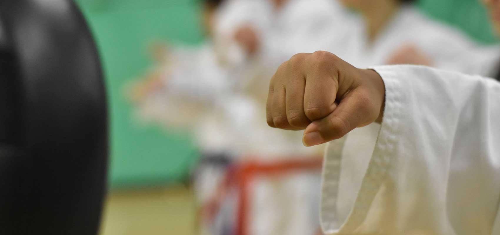 Childrens Martial Arts